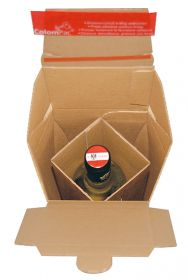 E-Commerce Flaschenversandverpackung (DHL zertifiziert)